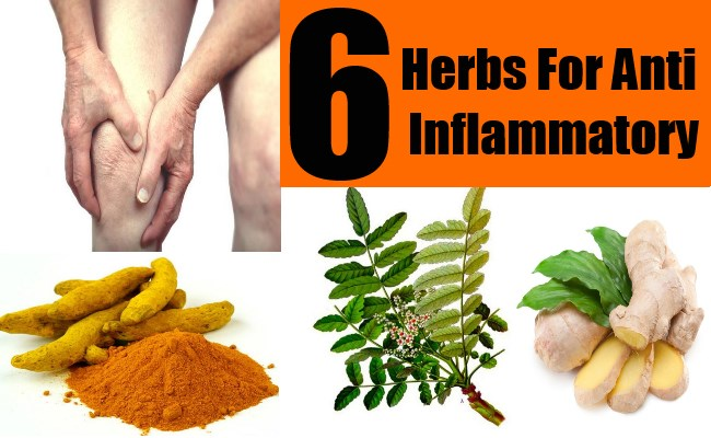 Over The Counter Inflamation Natural Cures
